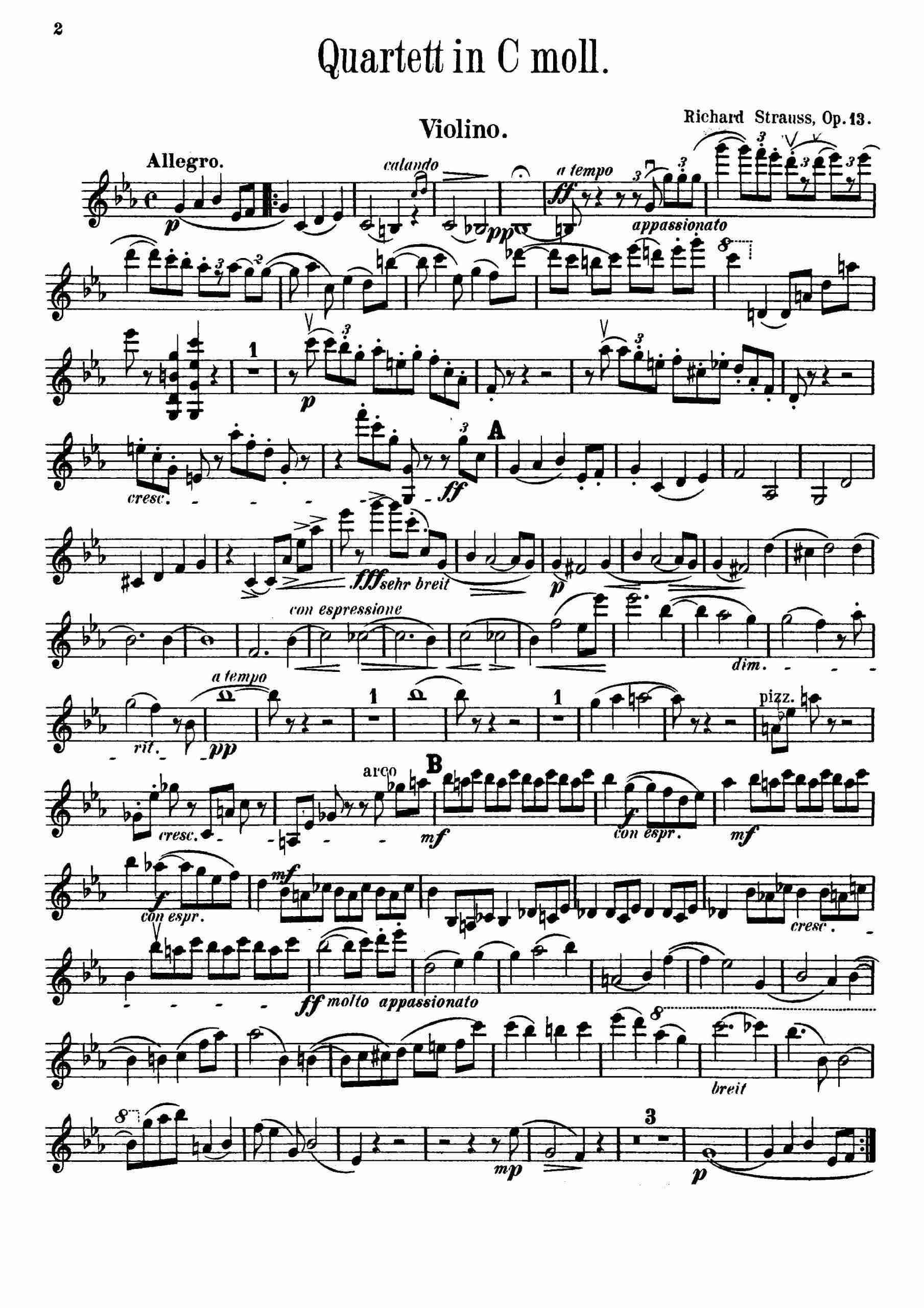 Strauss, Richard - Piano Quartet, Op.13